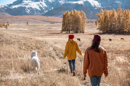 Girls are walking with white eskimo dog in mountains Фото со стока