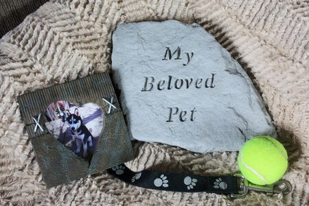 My Beloved Pet Memorial on Dog Bed
