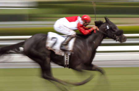 action blur: Motion Blur of Racing Jockey and Thoroughbred