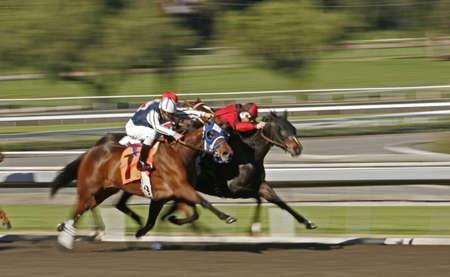 Motion Blur Horse Race