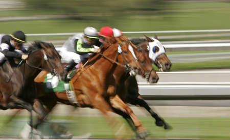 animal tracks: Slow shutter speed rendering of racing jockeys and horses