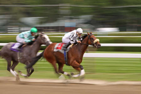 urging: Slow shutter speed rendering of two jockeys urging their thoroughbreds down the homestretch.