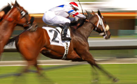 Slow shutter speed rendering of racing horse and jockey