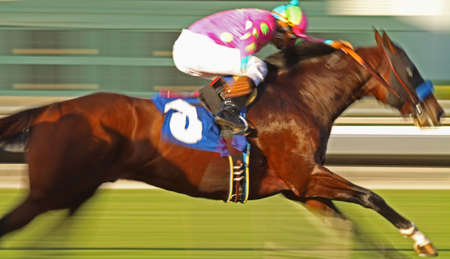 Slow shutter speed rendering of racing horse and jockey with deliberate high saturation photo