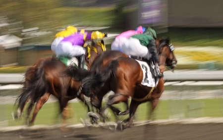 Slow shutter speed rendering of several racing jockeys and thoroughbred horses Stockfoto