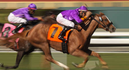 Motion blur of racing horses and jockeys Stock Photo