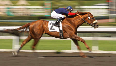Motion Blur of Racing Horse and Rider