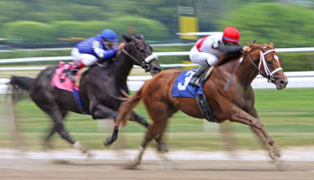 LMONT, NY - JUN 5: Jockey Alan Garcia guides Trappe Shot to victory in an allowance race at Belmont Park on Jun 5, 2010 in Elmont, NY.