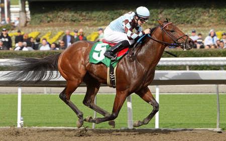 arcadia: ARCADIA, CA - DEC 26: Jockey Joe Talamo pilots two-year-old colt, Double Ds Diamond, to his first win at Santa Anita Park on Dec 26, 2010 in Arcadia, CA. Editorial