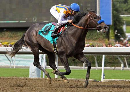 jockey: ARCADIA, CA - 26 de DEC: Jockey Rafael Bejarano gu�a The Factor, un colt de 2 a�os de edad, a su primera victoria en Santa Anita Park en el 26 de diciembre de 2010 en Arcadia, California.