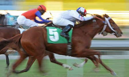 racecourse: Motion Blur Horse Race #1