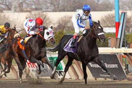 JAMAICA, NY - APR 9: Morning Line, under jockey John Velazquez, wins The Carter Handicap at Aqueduct Race Track on Apr 9, 2011 in Jamaica, NY. Editorial