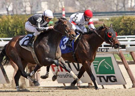 JAMAICA, NY - APR 9: Jockey Ramon Dominguez (#2), moves