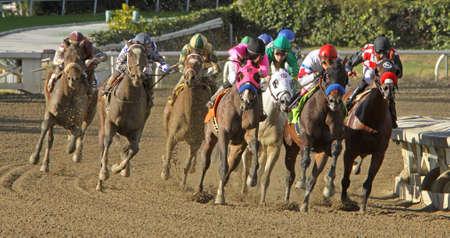 ARCADIA, CA - DEC 26: Jockey Rafael Bejarano guides
