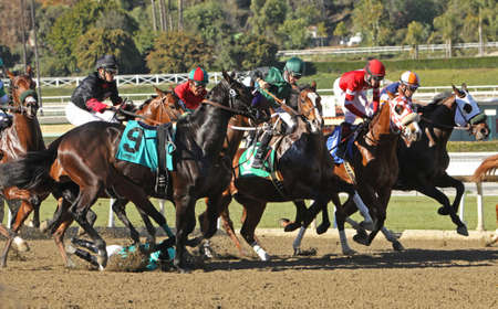 arcadia: ARCADIA, CA - JAN 17: Jockey Agapito Delgadillo  (#9) is unseated by Harlington Night as the gates open for a maiden race at Santa Anita Park on Jan 17, 2013 in Arcadia, CA. Both horse and rider were unhurt.