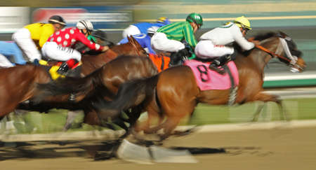 ARCADIA, CA - JAN 17: The field flies down the homestretch in a claiming race at Santa Anita Park on Jan 17, 2013 in Arcadia, CA. Eventual winner is Kevin Krigger (black cap on rail) and