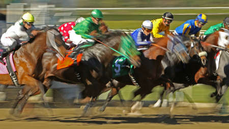 ARCADIA, CA - JAN 17: A field of thoroughbred horses breaks from the gate in a claiming race at historic Santa Anita Park on Jan 17, 2013 in Arcadia, CA.  Redactioneel
