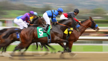 ARCADIA, CA - FEB 2: Hall of Fame Jockey Gary Stevens (black cap) pilots  에디토리얼