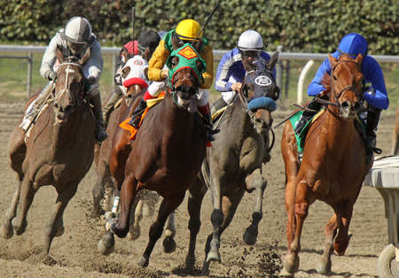 ARCADIA, CA - FEB 16: Jockeys take the turn and head down the homestretch in the 3rd race at Santa Anita Park on Feb 16, 2013 in Arcadia, CA. Eventual winner is Kevin Krigger (outside) and