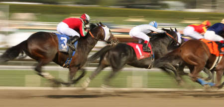 arcadia: ARCADIA, CA - MAR 8: Sahara Sky (#1), with Joel Rosario up, threads his way through traffic to win The San Carlos Stakes at historic Santa Anita Park on Mar 8, 2014 in Arcadia, CA.