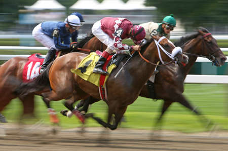 SARATOGA SPRINGS, NY - JUL 18: Magsamelia (4) with John Velazquez up, finishes 2nd in a maiden race at Saratoga Race Course on July 18, 2014 in Saratoga Springs, NY.