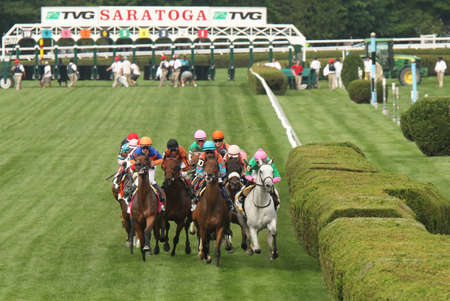 SARATOGA SPRINGS, NY - JUL 19: The field for the Grade I TVG Diana Stakes heads down the stretch  at Saratoga Race Course on July 19, 2014 in Saratoga Springs, NY. Eventual winner is Somali Lemonade (Luis Saez up), 2nd from right.