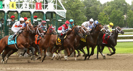SARATOGA SPRINGS, NY - JUL 19: The field for the 2014 Sanford Stakes breaks from the gate at historic Saratoga Race Course on July 19, 2014 in Saratoga Springs, NY. Eventual winner is Big Trouble (4) and jockey Irad Ortiz, Jr.