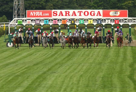 SARATOGA SPRINGS, NY - JUL 19: The field for a turf allowance race breaks from the gate at historic Saratoga Race Course on July 19, 2014 in Saratoga Springs, NY. Eventual winner is Devilish Love (3rd from left) and jockey Joe Rocco.