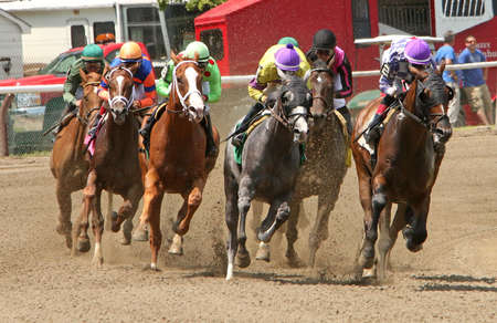 longshot: SARATOGA SPRINGS, NY - JUL 18: The field rounds the turn and heads down the backstretch in the 1st race of the season at historic Saratoga Race Course on July 18, 2014 in Saratoga Springs, NY. Eventual winner is longshot Winter Games (far right) and jocke Editorial