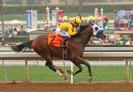 ARCADIA, CA - FEB 7: Jockey Corey Nakatani guides Cyrus Alexander to victory in a maiden race at historic Santa Anita Park on February 7, 2015 in Arcadia, CA. Editorial