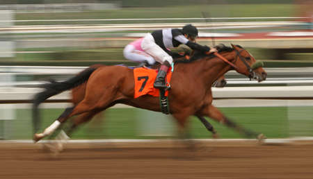 ARCADIA, CA - FEB 7: Jockey Iggy Puglisi guides Cheap O Charlie (#7) to a second place finish in a maiden race at historic Santa Anita Park on February 7, 2015 in Arcadia, CA. Editorial