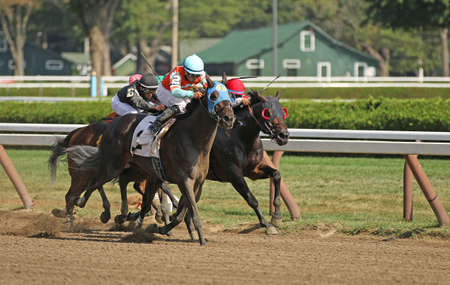 SARATOGA SPRINGS, NY - SEPT 4: Jockey Luis Saez aqua cap pilots Oltre' Oro to victory in a claiming race at Saratoga Race Course on September 4, 2015 in Saratoga Springs, NY.
