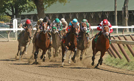 SARATOGA SPRINGS, NY - SEPT 5: The field surges around the turn and heads down the homestretch in a maiden race at Saratoga Race Course on September 5, 2015 in Saratoga Springs, NY. Eventual winner is Jockey Javier Castellano green cap, on right and Green