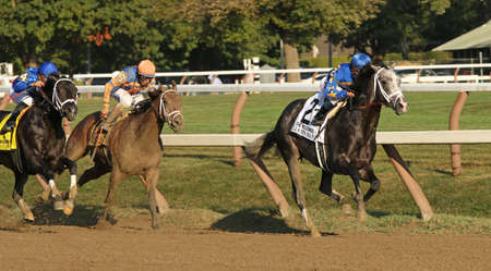 and the stakes: SARATOGA SPRINGS, NY - SEPT 5: Jockey Javier Castellano pilots Liams Map to victory in the Woodward Stakes at Saratoga Race Course on September 5, 2015 in Saratoga Springs, NY. Editorial