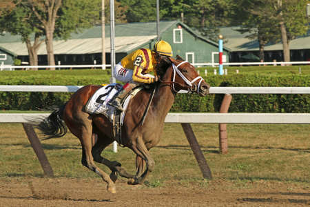 valentina: SARATOGA SPRINGS, NY - SEPT 5: Jockey John Velazquez pilots Rachels Valentina to victory in The Spinaway Stakes at Saratoga Race Course on September 5, 2015 in Saratoga Springs, NY. It was the fillys first stakes win.