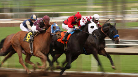 and arcadia: ARCADIA, CA- January 9, 2016: Jockey Santiago Gonzalez maroon cap surges up the outside en route to winning an allowance race aboard Big Tire at Santa Anita Race Track in Arcadia, CA. Editorial
