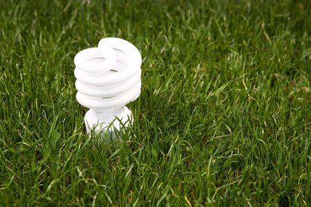 Energy saving light bulb in green grass