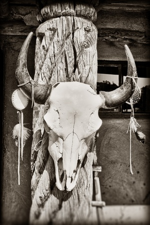 Cow skull hanging on post at Taos Pueblo in New Mexico