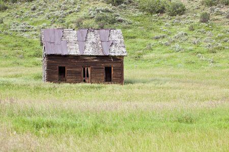 homestead: Old Homestead in field, near Milner, Colorado