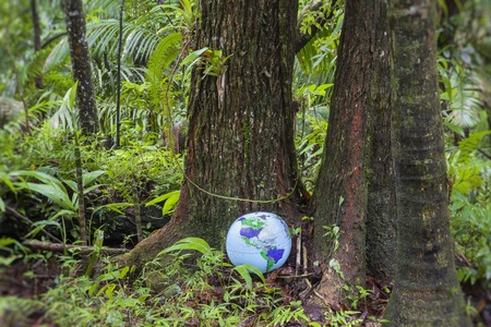 Inflatable globe in the middle of the rainforest, El Yunque National Forest, Puerto Rico