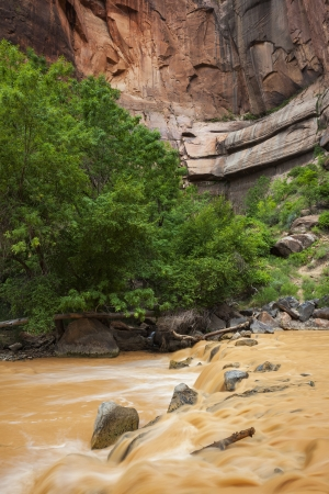 Big Bend and Virgin River, Zion National Park, Utah The river is muddy due to intense rainstorms upstream. Stock Photo