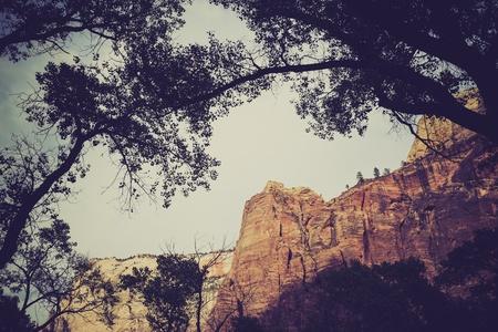 Zion National Park, Utah Stock Photo - 21995352
