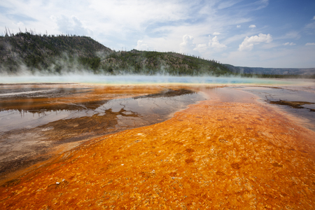 Colorful bacteria mat surrounding Grand Prismatic Spring, Midway Geyser Basin, Yellowstone National Park, Wyoming photo