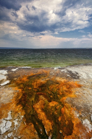 runoff: Colorful bacteria mats form in hot water runoff, Yellowstone Lake, West Thumb Geyser Basin, Yellowstone National Park, Wyoming Stock Photo