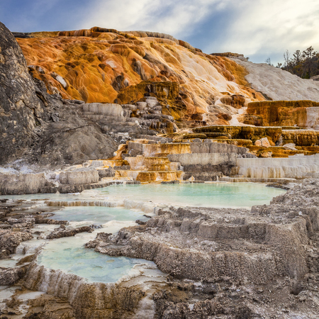 Palette Spring in Mammoth Hot Springs, Yellowstone National Park, Wyoming