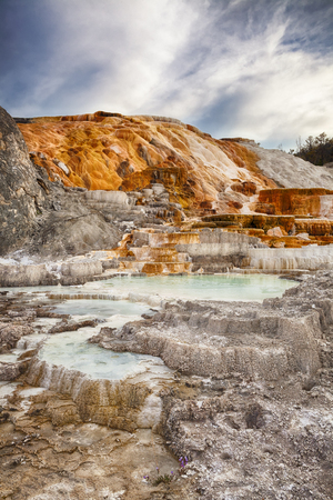 Palette Spring in Mammoth Hot Springs, Yellowstone National Park, Wyoming photo