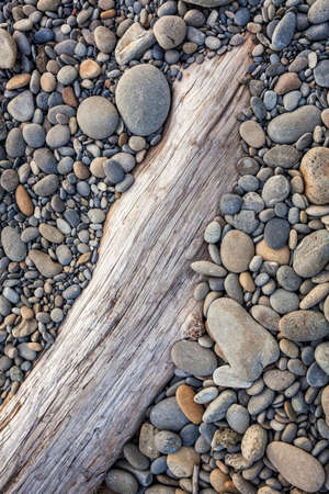driftwood: Smooth stones on driftwood at Ruby Beach, Olympic Peninsula, Olympic National Park, Washington Stock Photo