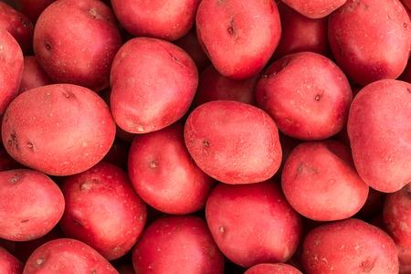 赤いジャガイモのブッシェル 写真素材 - 29448904