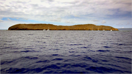 The Molokini Crater is a partially submerged volcanic crate off the island of Maui. It is a popular dive and snorkel destination
