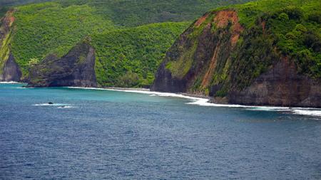 coastlines: Pacific ocean waves roll into the rugged Kona coast on the Big Island of Hawaii
